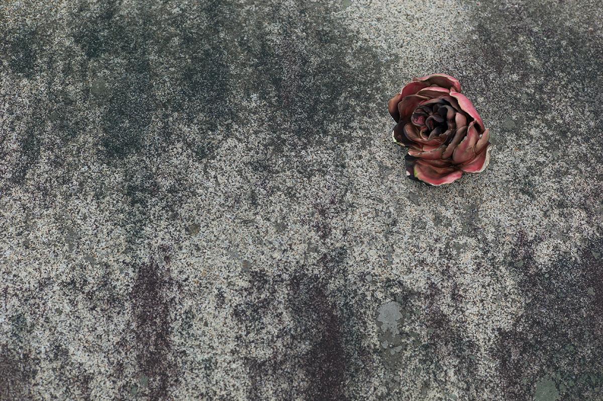 Virgile Laguin – Diary | 09.12.2018 |  | Photography