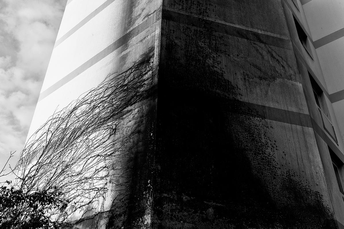 Virgile Laguin – Diary | 04.10.2020 |  | Photography