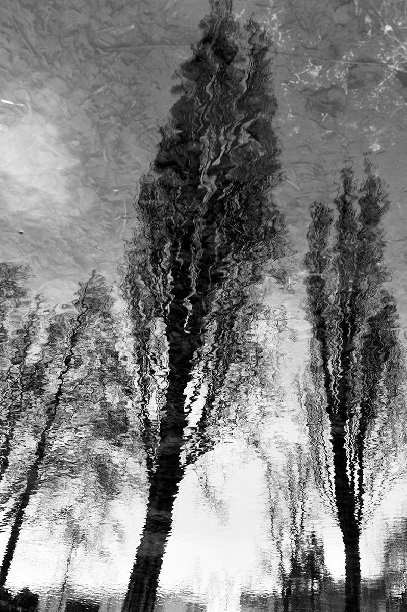 Virgile Laguin – Diary | 31.01.2021 |  | Photography